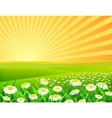 nature background vector image vector image