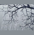 Winter branches vector image