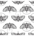 butterfly seamless background vector image