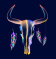 bright bull skull with feathers over dark vector image
