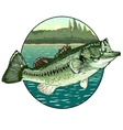 Big mouth bass vector image