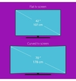 Two types of tv screen vector image