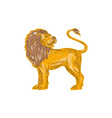 Angry Lion Big Cat Roaring Drawing vector image