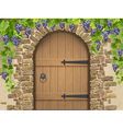Arch of stone grapes and wooden door vector image