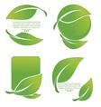 leaves symbols vector image