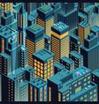 night new york isometric perspective cartoon vector image