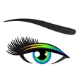 colorful eye with eyelashes vector image