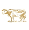 cow doodle on white vector image vector image