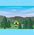 camp landscape vector image