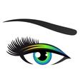 Colorful eye with eyelashes vector image