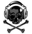 skull in headphones vector image