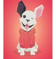 Funny cartoon dog French Bulldog vector image