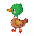 with a bird in cartoon style vector image