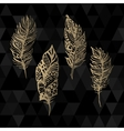 Hand drawn zentangle gold feathers set on vector image