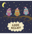 Good night card with cute sleeping owls vector image