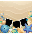 photo frames and shells vector image vector image