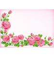 Frame of roses vector image vector image