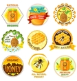 Honey Emblem Set vector image
