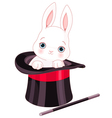 Rabbit in Top Hat Magic Trick vector image