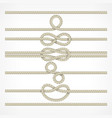 knots and loops on ropes vector image vector image
