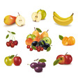 big group of different fruit vector image vector image