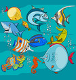 fish cartoon characters group vector image