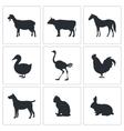Pets icon set vector image