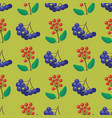 berries seamless pattern vegetarian berry vector image