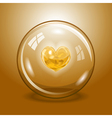 Shining heart in the glass ball vector image