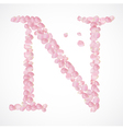 N letter Alphabet from pink petals of rose vector image