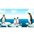 Penguins standing on iceberg vector image