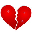 Aparted heart with tears vector image