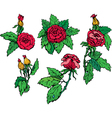 roses elements set vector image