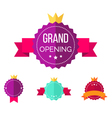grand opening badges vector image