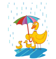 lovely mother duck vector image