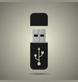 Usb flash drive icon vector image