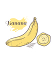 Banana with slice vector image