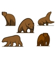 Brown colored bear characters vector image