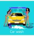 Girl Car Wash Flat Concept Icon vector image