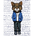 cat wearing casual clothes vector image