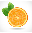 Fresh juicy piece of orange isolated on white vector image