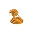 Cobra Viper Snake Coiled Drawing vector image