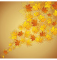 Autumn maple leaves stream vector image vector image