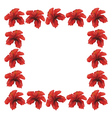 Red hibiscus frame vector image vector image