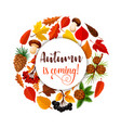 autumn leaf poster for fall nature season design vector image