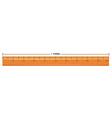Wooden ruler with measurement in meter vector image