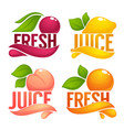 cherry lemon orange peach collection of dresh vector image