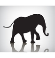 elephant silhouette with vector image