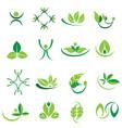 green leaves logo icons organic set vector image