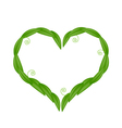 Fresh Green Leaves in A Heart Shape vector image vector image